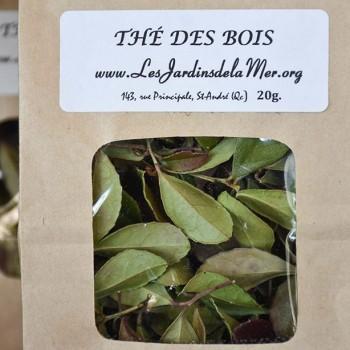 Tisane de thé des bois